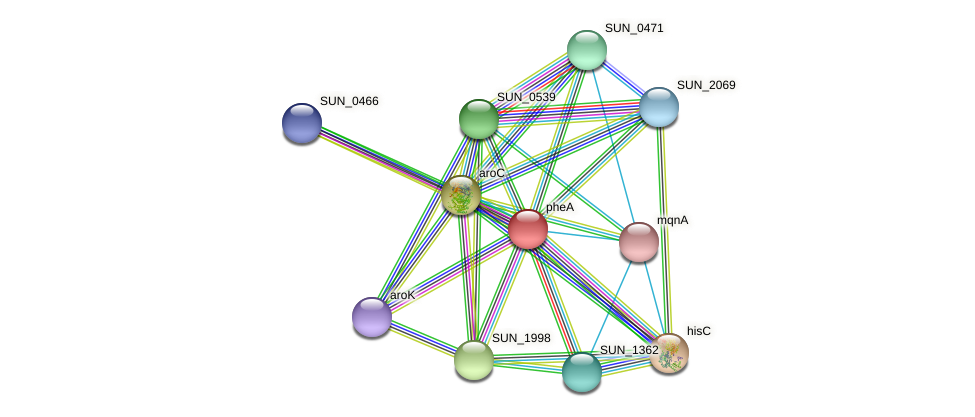 pheA protein (Sulfurovum sp. NBC371) - STRING interaction network