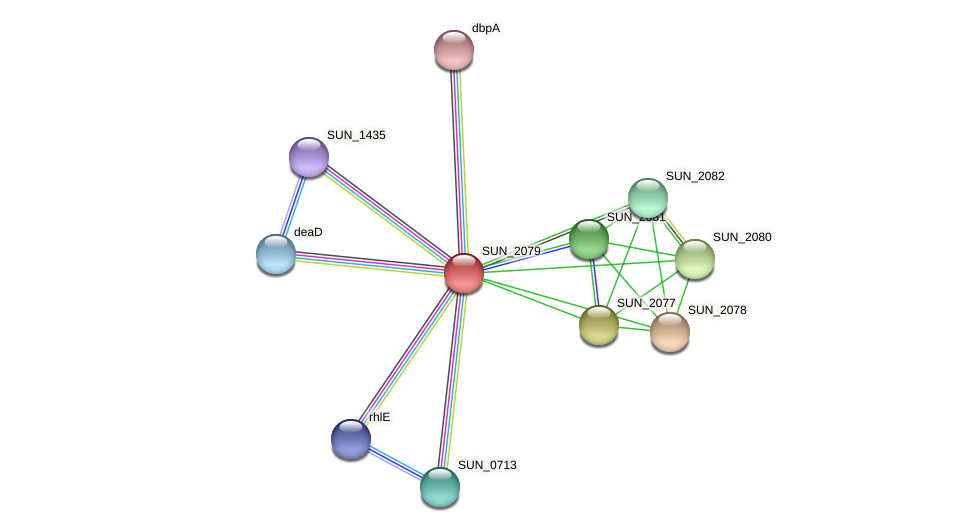 SUN_2079 protein (Sulfurovum sp. NBC371) - STRING interaction network
