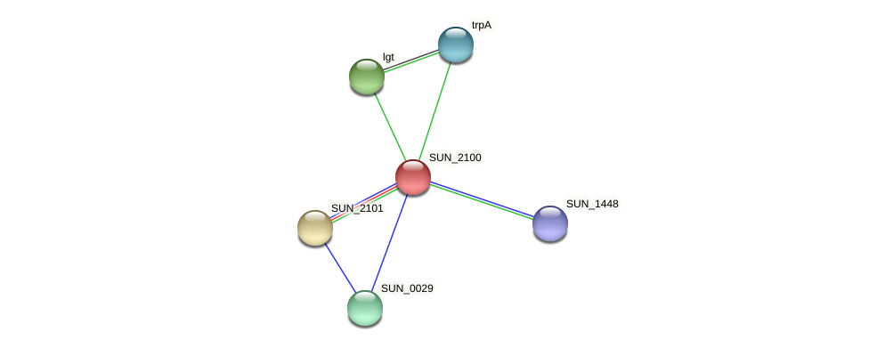 SUN_2100 protein (Sulfurovum sp. NBC371) - STRING interaction network