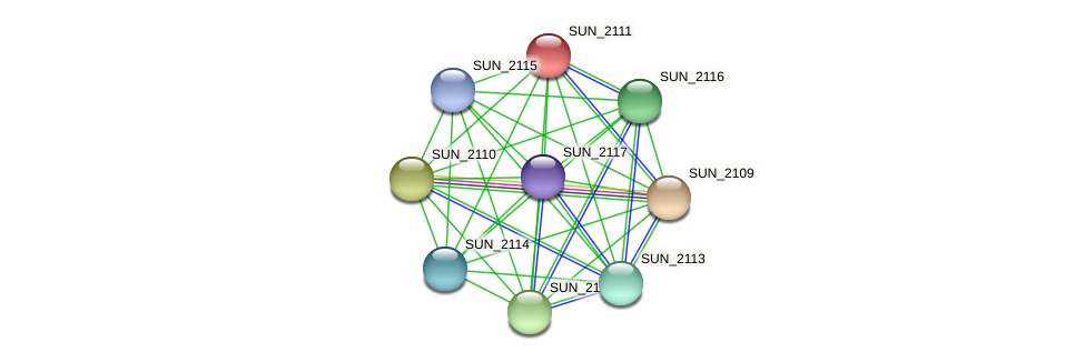 SUN_2111 protein (Sulfurovum sp. NBC371) - STRING interaction network