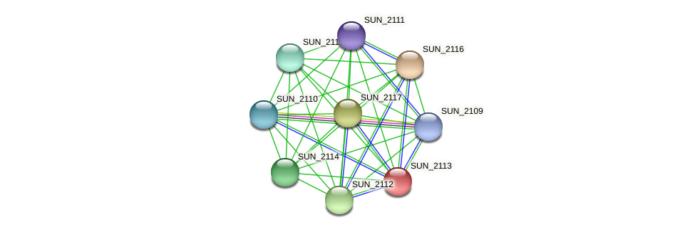 SUN_2113 protein (Sulfurovum sp. NBC371) - STRING interaction network