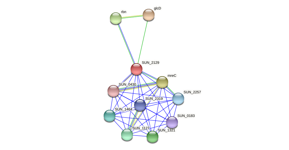 SUN_2129 protein (Sulfurovum sp. NBC371) - STRING interaction network
