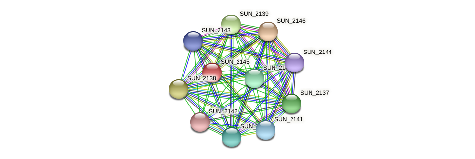 SUN_2145 protein (Sulfurovum sp. NBC371) - STRING interaction network