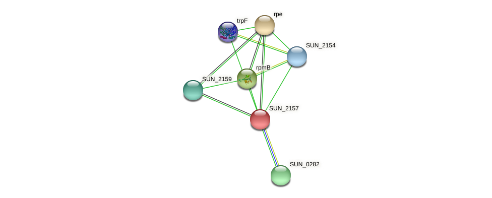 SUN_2157 protein (Sulfurovum sp. NBC371) - STRING interaction network