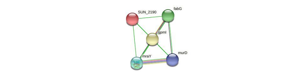 SUN_2190 protein (Sulfurovum sp. NBC371) - STRING interaction network