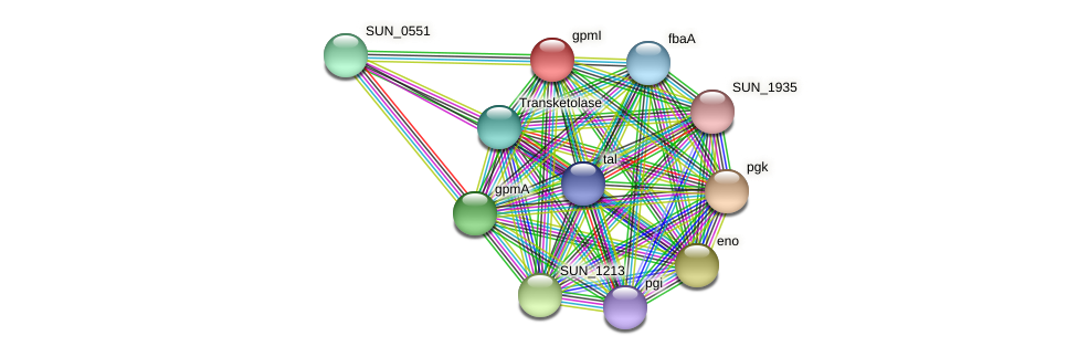 gpmI protein (Sulfurovum sp. NBC371) - STRING interaction network