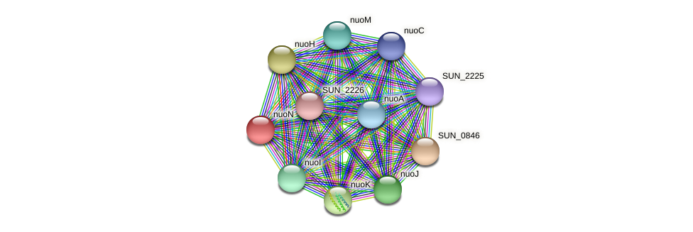 nuoN protein (Sulfurovum sp. NBC371) - STRING interaction network