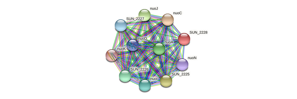 SUN_2228 protein (Sulfurovum sp. NBC371) - STRING interaction network