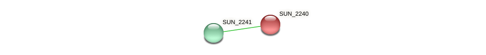 SUN_2240 protein (Sulfurovum sp. NBC371) - STRING interaction network