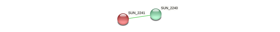 SUN_2241 protein (Sulfurovum sp. NBC371) - STRING interaction network