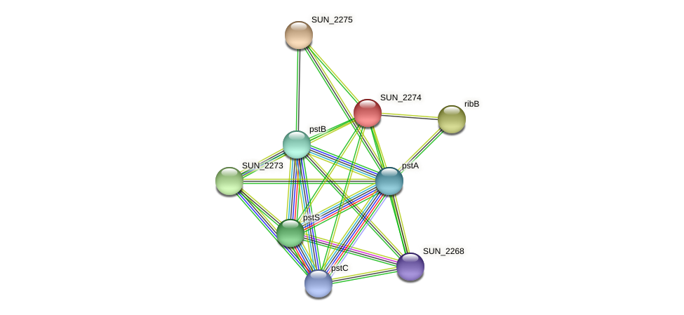SUN_2274 protein (Sulfurovum sp. NBC371) - STRING interaction network