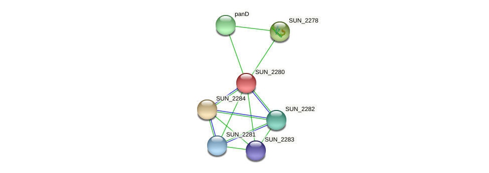 SUN_2280 protein (Sulfurovum sp. NBC371) - STRING interaction network