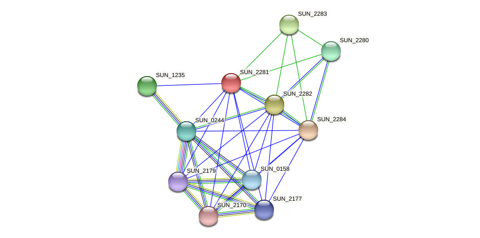 SUN_2281 protein (Sulfurovum sp. NBC371) - STRING interaction network