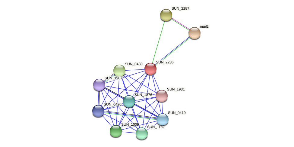 SUN_2286 protein (Sulfurovum sp. NBC371) - STRING interaction network