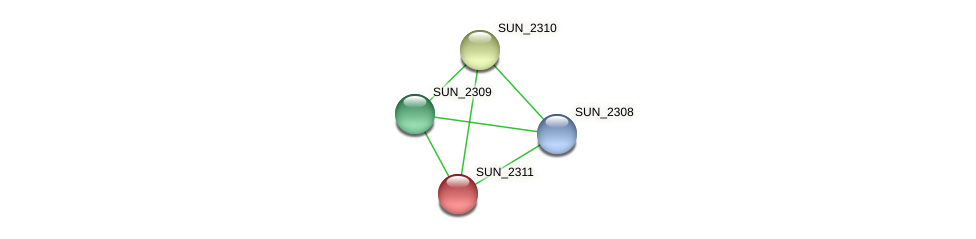 SUN_2311 protein (Sulfurovum sp. NBC371) - STRING interaction network
