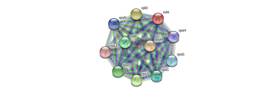 infA protein (Sulfurovum sp. NBC371) - STRING interaction network