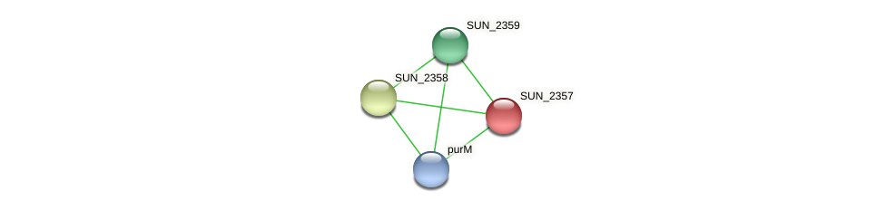 SUN_2357 protein (Sulfurovum sp. NBC371) - STRING interaction network