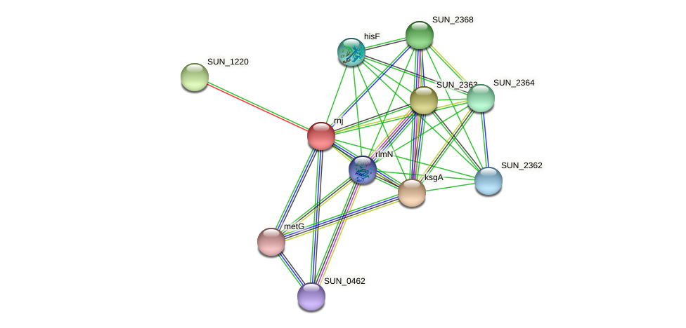 SUN_2365 protein (Sulfurovum sp. NBC371) - STRING interaction network