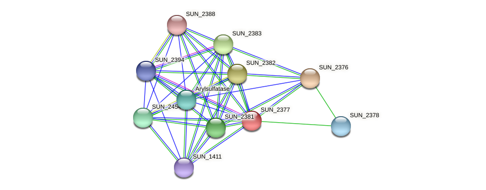 SUN_2377 protein (Sulfurovum sp. NBC371) - STRING interaction network
