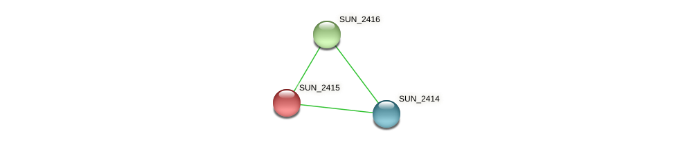 SUN_2415 protein (Sulfurovum sp. NBC371) - STRING interaction network