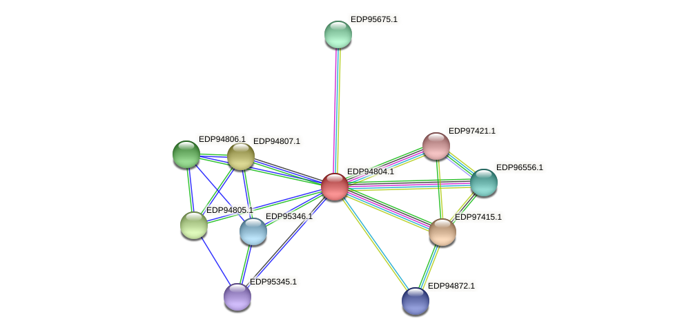 KAOT1_01220 protein (Kordia algicida) - STRING interaction network