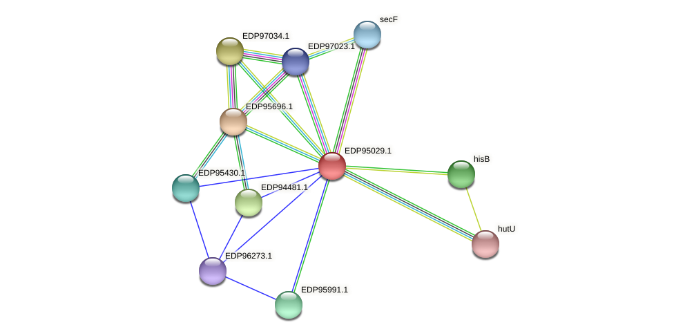 KAOT1_01799 protein (Kordia algicida) - STRING interaction network