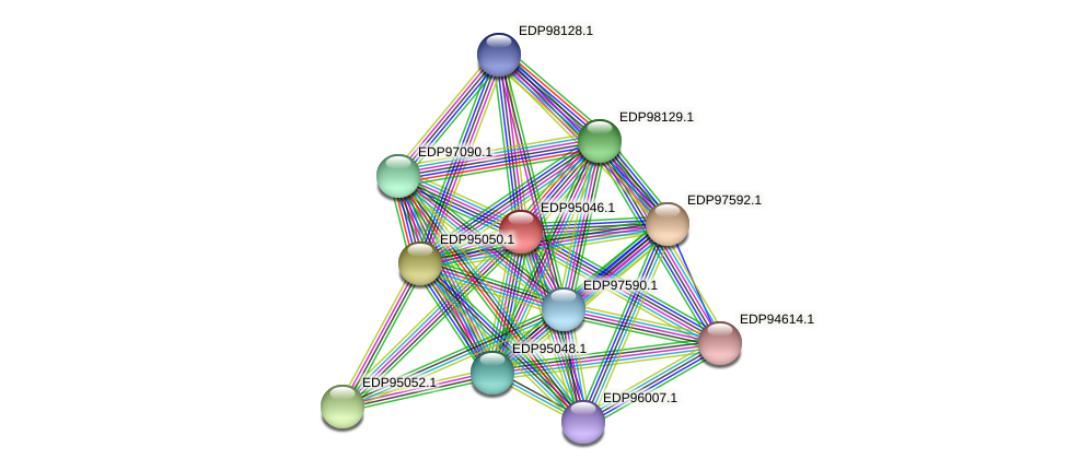 KAOT1_01884 protein (Kordia algicida) - STRING interaction network