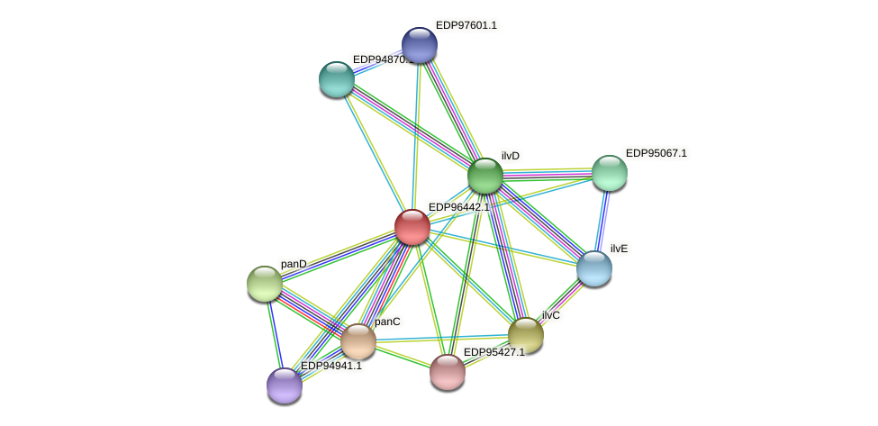KAOT1_03497 protein (Kordia algicida) - STRING interaction network