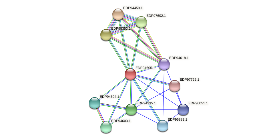 KAOT1_04290 protein (Kordia algicida) - STRING interaction network