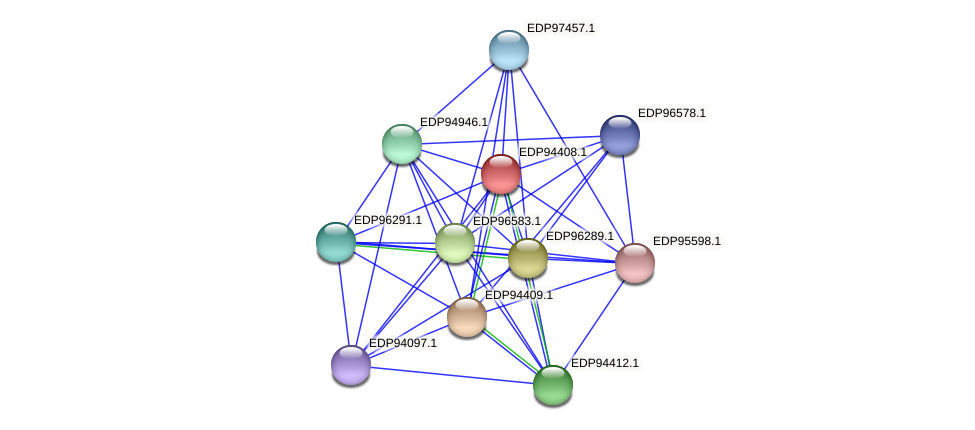 KAOT1_04535 protein (Kordia algicida) - STRING interaction network