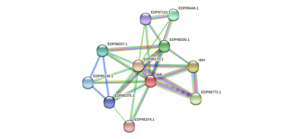 KAOT1_04560 protein (Kordia algicida) - STRING interaction network