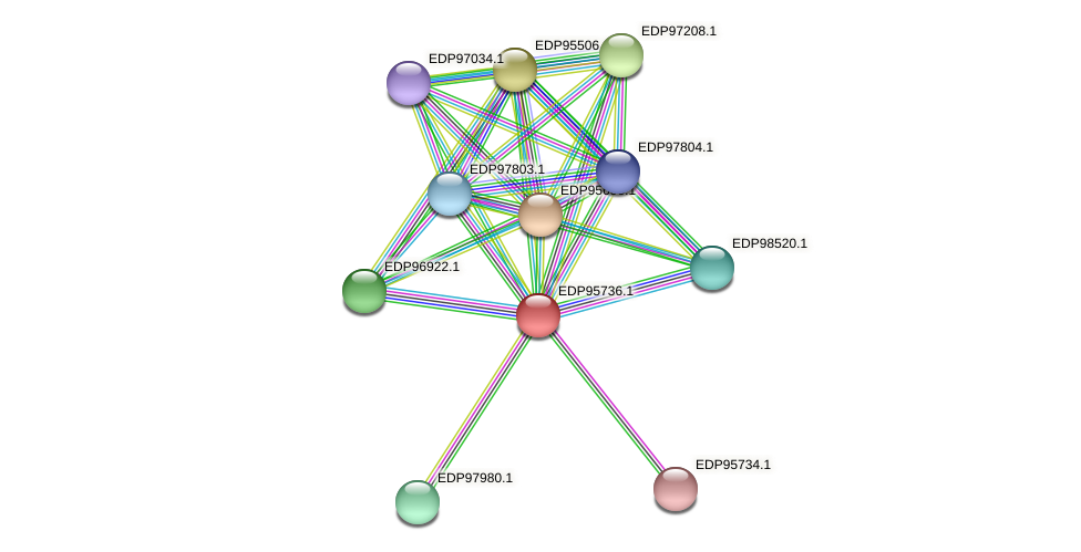 KAOT1_05012 protein (Kordia algicida) - STRING interaction network