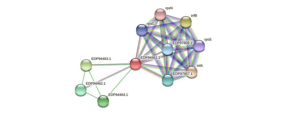 KAOT1_05977 protein (Kordia algicida) - STRING interaction network