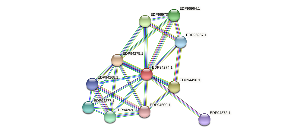 KAOT1_06322 protein (Kordia algicida) - STRING interaction network