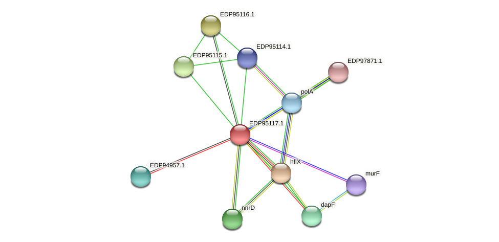 KAOT1_06527 protein (Kordia algicida) - STRING interaction network