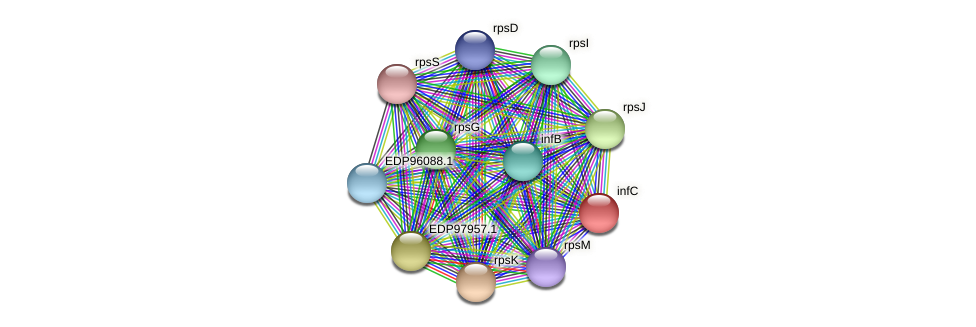 infC protein (Kordia algicida) - STRING interaction network