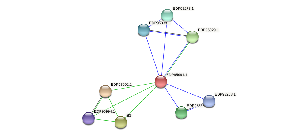 KAOT1_07478 protein (Kordia algicida) - STRING interaction network