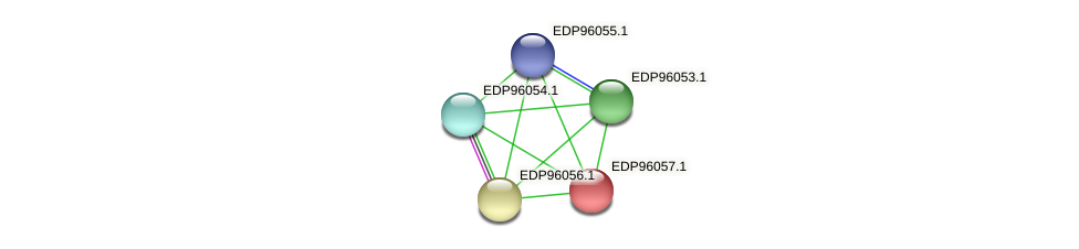 KAOT1_07808 protein (Kordia algicida) - STRING interaction network