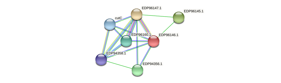 KAOT1_08253 protein (Kordia algicida) - STRING interaction network