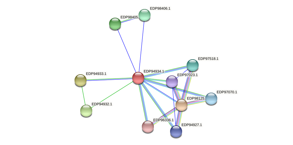 KAOT1_08974 protein (Kordia algicida) - STRING interaction network