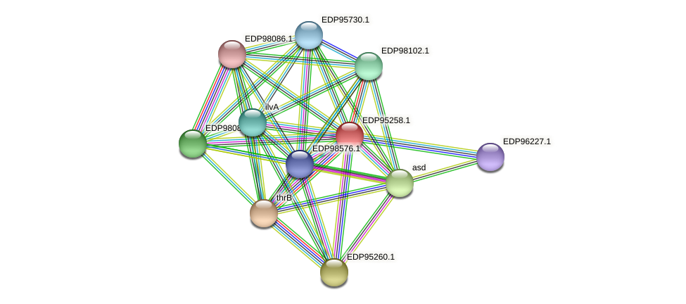 KAOT1_09306 protein (Kordia algicida) - STRING interaction network