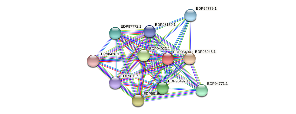 KAOT1_11261 protein (Kordia algicida) - STRING interaction network