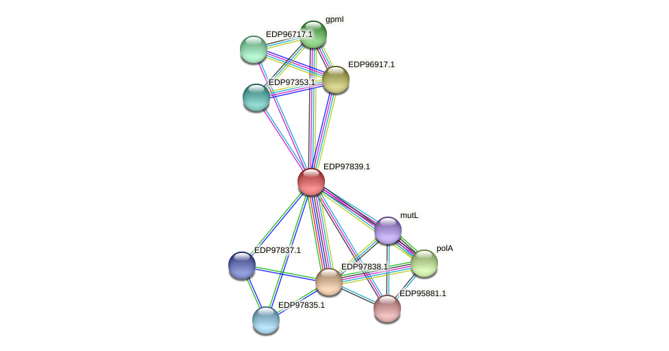 KAOT1_11517 protein (Kordia algicida) - STRING interaction network