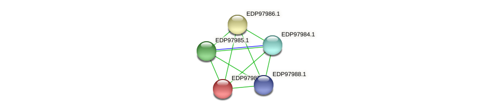 KAOT1_12257 protein (Kordia algicida) - STRING interaction network