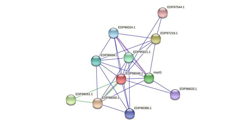 KAOT1_12567 protein (Kordia algicida) - STRING interaction network