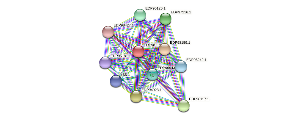 KAOT1_12912 protein (Kordia algicida) - STRING interaction network