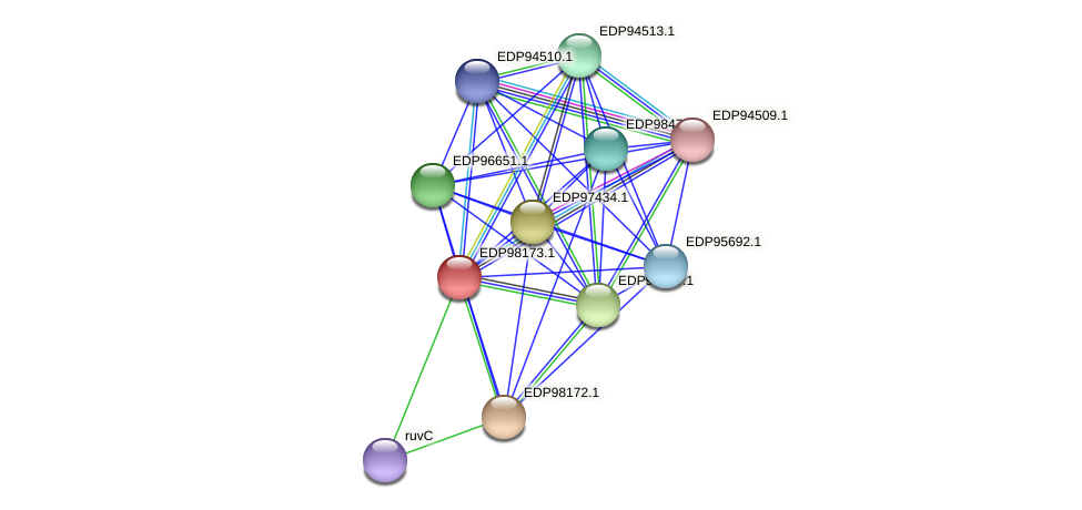 KAOT1_13187 protein (Kordia algicida) - STRING interaction network