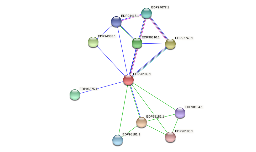 KAOT1_13237 protein (Kordia algicida) - STRING interaction network