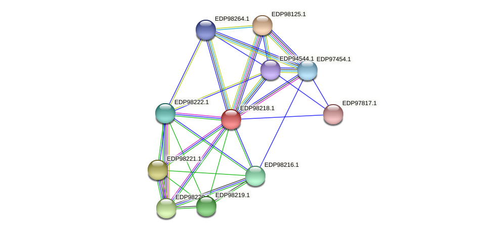 KAOT1_13412 protein (Kordia algicida) - STRING interaction network