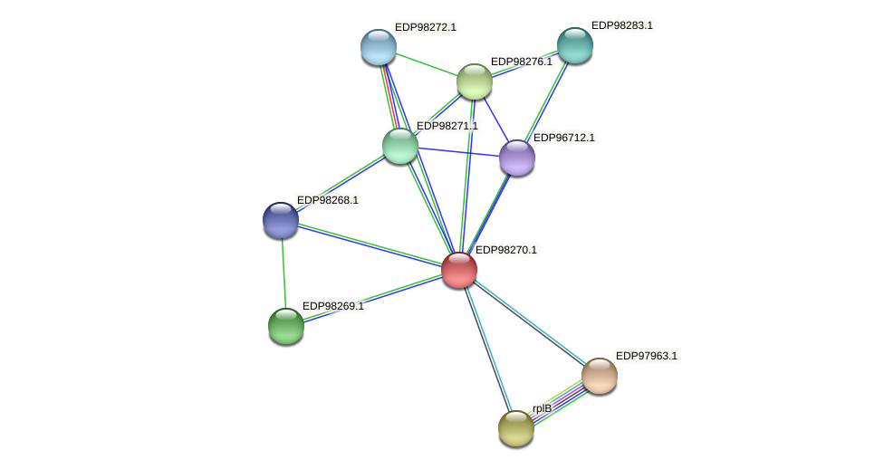 KAOT1_13672 protein (Kordia algicida) - STRING interaction network